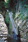 Самшитовое и Волконское ущелье