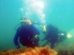 обучение дайвингу Дайвинг на Черном море