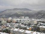 Лазаревское 2012 год фото февраль