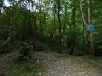 Лазаревское экскурсии - Свирское ущелье заходи на marin-tur