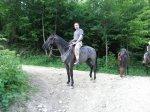 """Частная конюшня """"Идальго"""" Лазаревское конные прогулки к водопадам"""