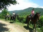 конные прогулки к водопадам в Лазаревском