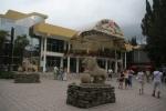 Лазаревское аквапарк Морская звезда