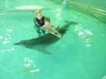 Дельфинотерапия в Лазаревской