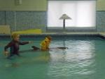 Дельфинотерапия в Лазаревском