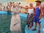 Дельфинарий Лазаревское белый кит