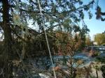 Продажа Продаю квартиры свободной планировки в Лазаревской