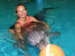 плавание с дельфинами Лазаревское