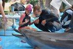 Дельфинотерапия Анапа-Сочи, запись